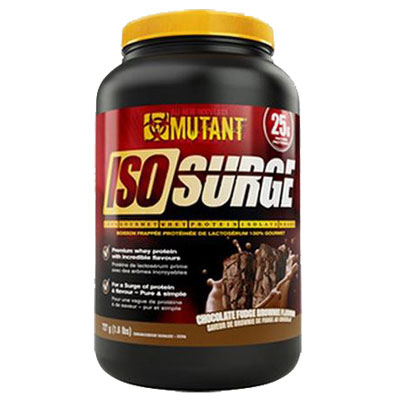 Iso Surge 1.6Lbs Chocolate Fudge