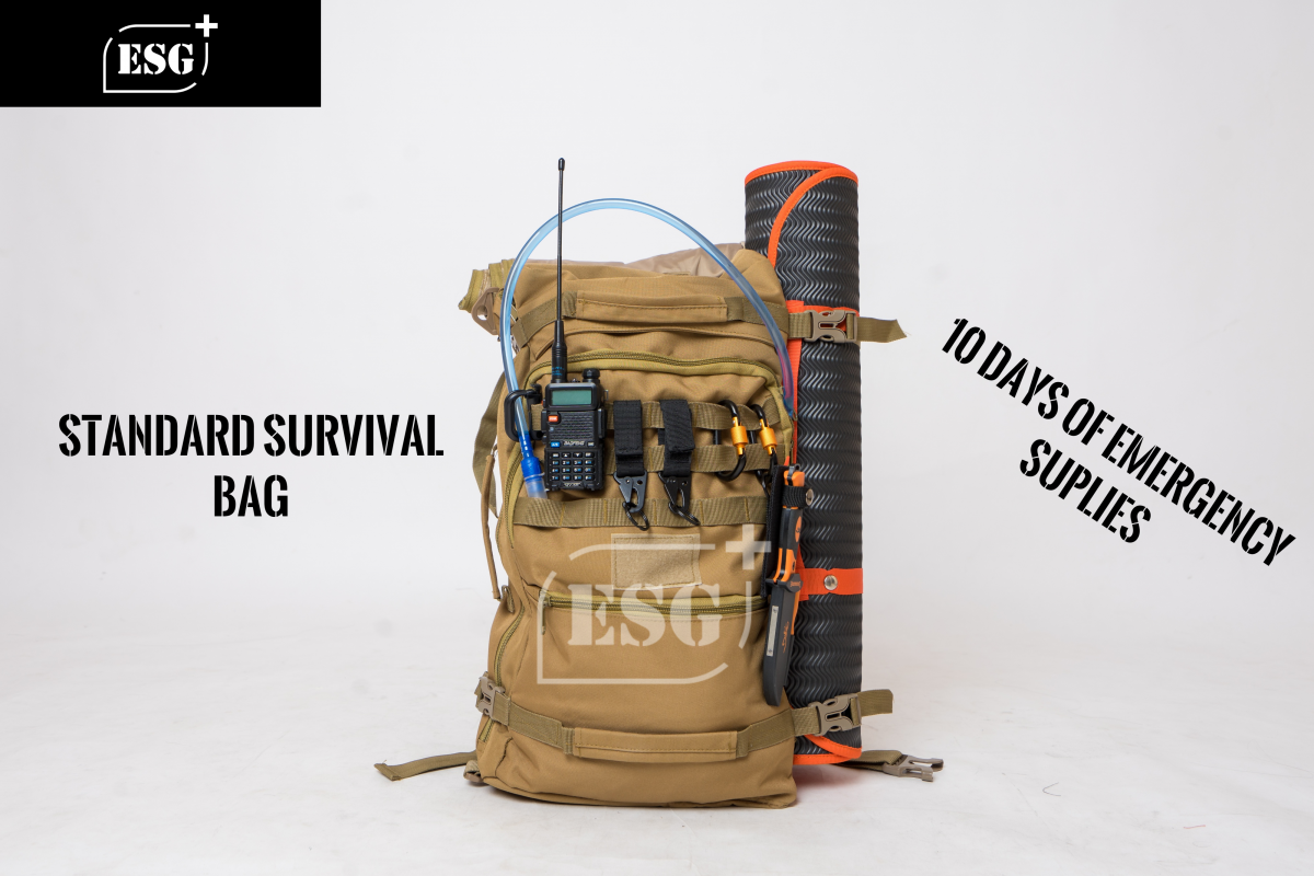 Standard Survival Bag