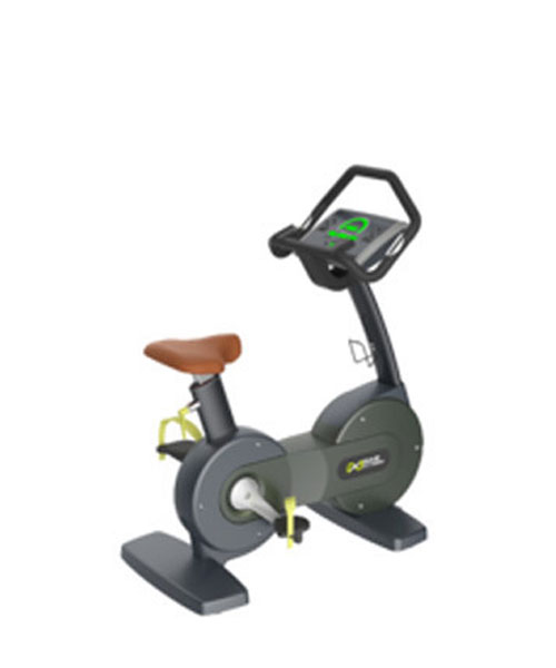 Upright Bike Commercial X9107