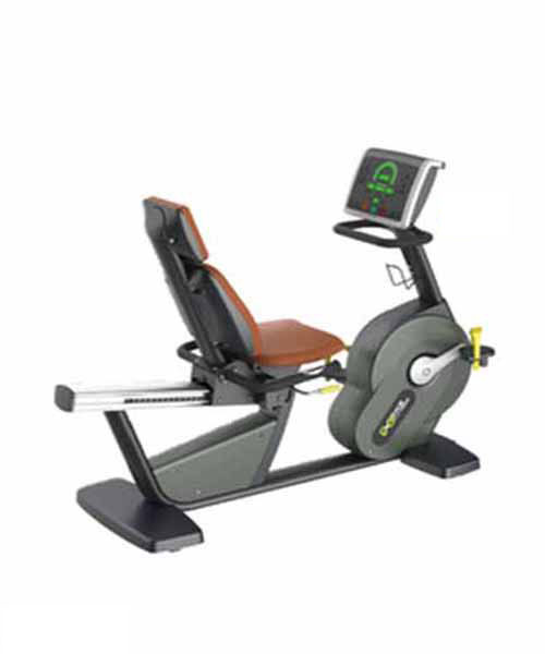 Recumbent Bike Commercial X9109